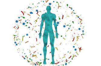 микробиом-человека что это такое