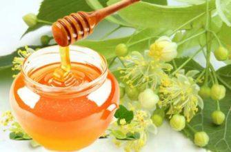 lipovyj-med-poleznye-svojstva-i-protivopokazaniya