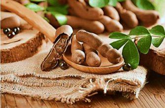 tamarind-chto-za-rastenie-poleznye-svojstva-i-protivopokazaniya