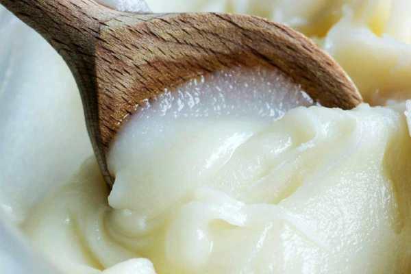 barsuchij-zhir-lechebnye-svojstva-i-protivopokazaniya